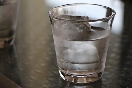 フクロモモンガ 水 飲まない