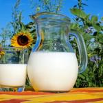フクロモモンガに与えるミルクの量、ミルクの作り方や与え方について