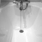 フクロモモンガをお風呂に入れよう!頻度はどのくらい?